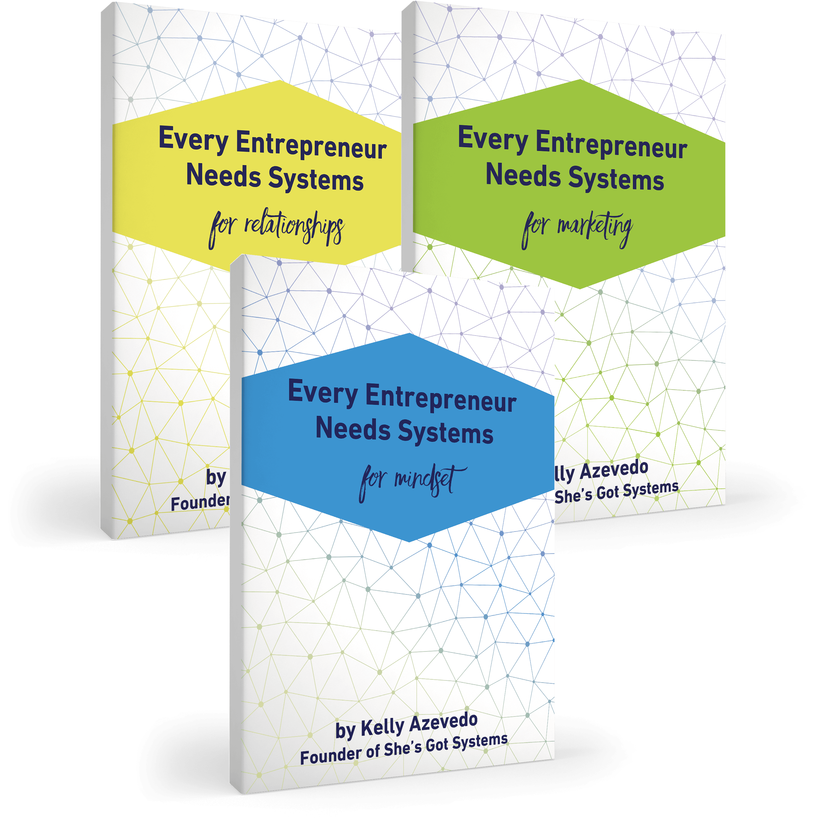 Every Entrepreneur Needs Systems: for Relationships, Marketing and Mindset